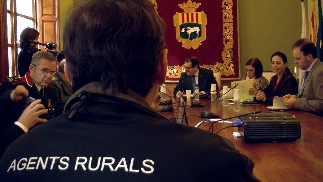 Les Borges 20 punts per sota de la mitjana de Catalunya en fets delictius