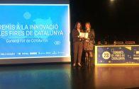 La coordinadora d'actes firals de l'Ajuntament de les Borges recollint el premi a la Innovació de Fires de Catalunya.