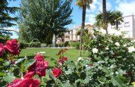 El Parc del Terral engalanat per al concurs Garrigues en Flor 2018_1