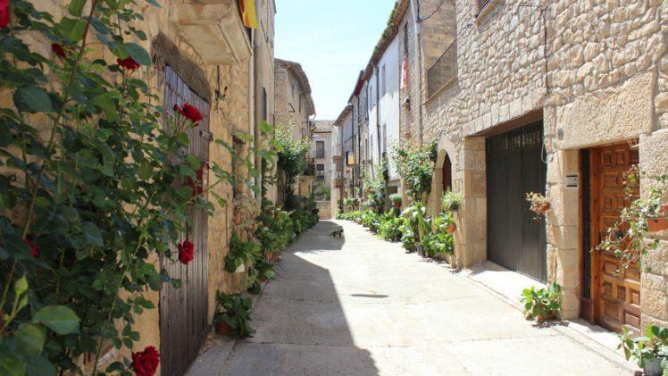 Aquest cap de setmana arriba la segona edició de Les Garrigues en Flor