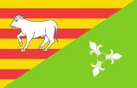Les Borges inicia un procés participatiu per escollir la nova bandera de la ciutat