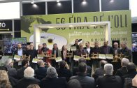 La Biblioteca Marquès d'Olivart organitza la Festa de la 16a Bibliocursa