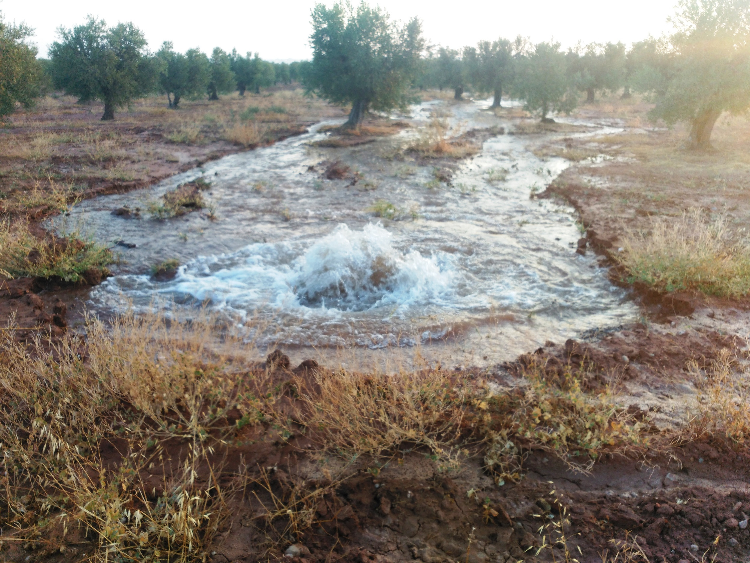 Rebentada canonada auxiliar de reg del Canal Segarra-Garrigues