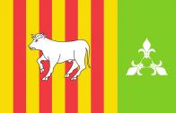 Imatge de la bandera guanyadora.