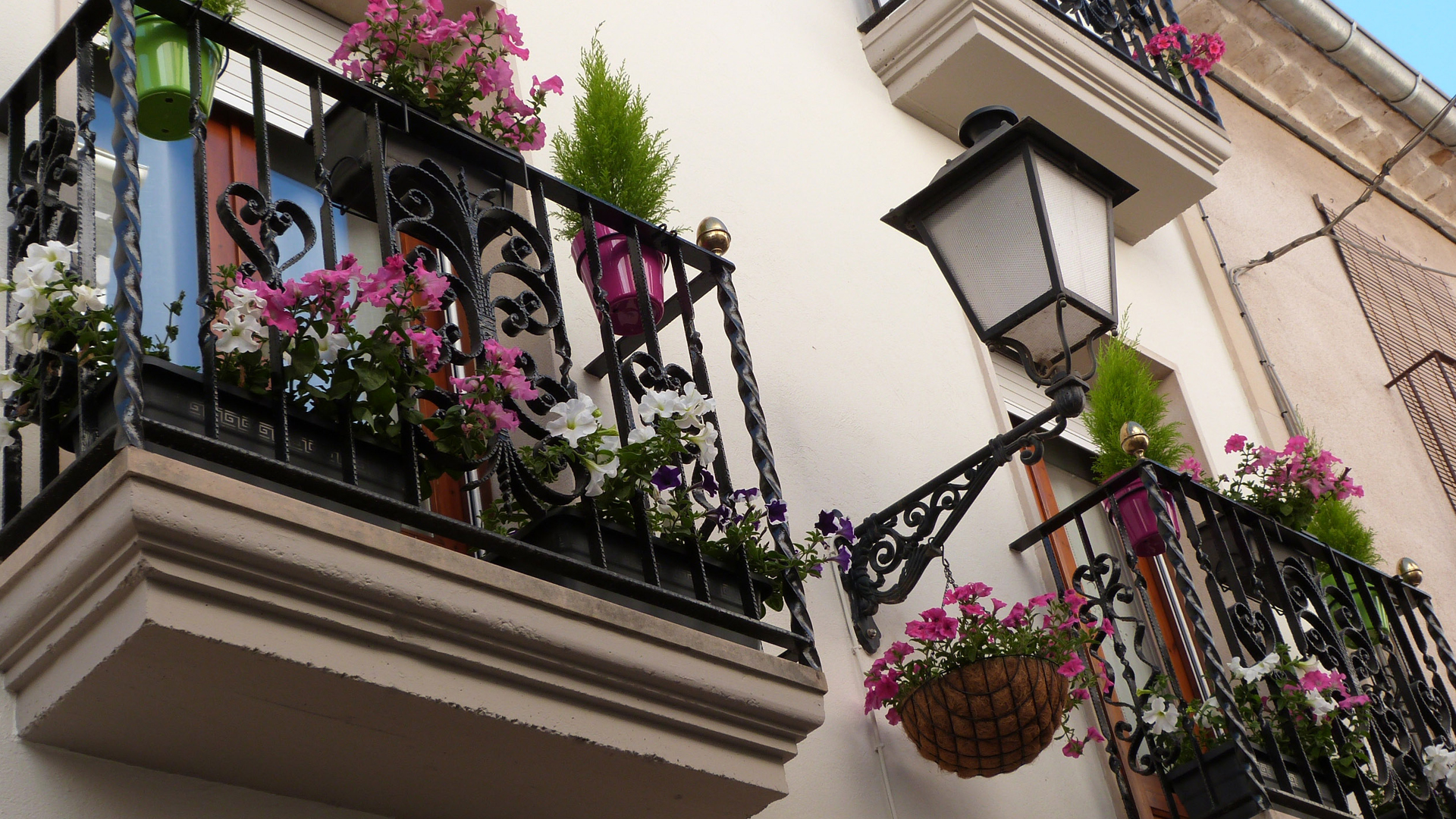 Les Borges elabora una guia per visitar els espais engalanats de la ciutat dins la campanya Les Garrigues en Flor