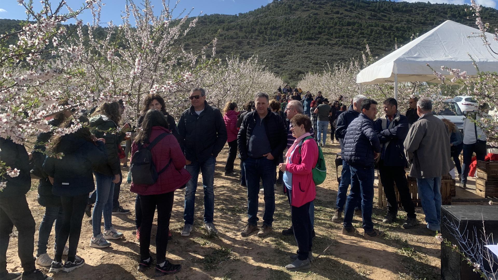 Èxit del primer Vermut entre ametllers a Castelldans