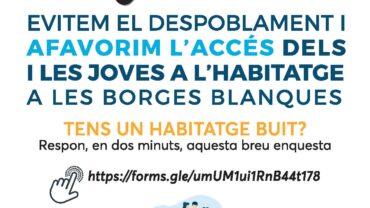 Infografia sobre l'enquesta d'habitatges buits a les Borges Blanques