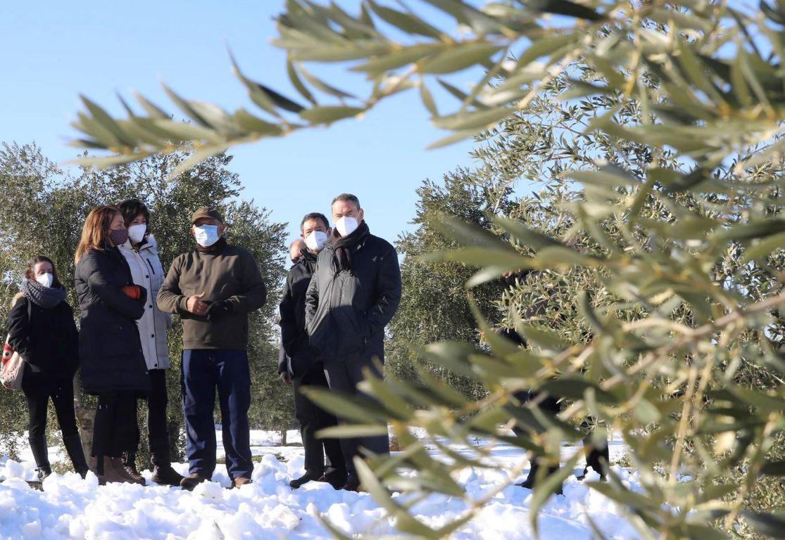 La consellera Budó visita les zones més afectades pel temporal Filomena a les Garrigues